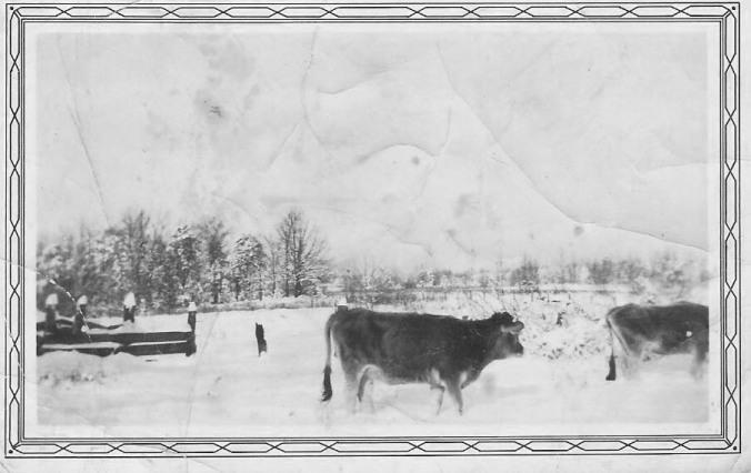 Snow 1929