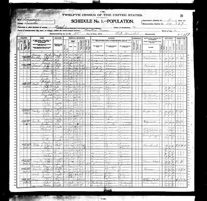 1900UnitedStatesFederalCensus_FE Mayo Page 1