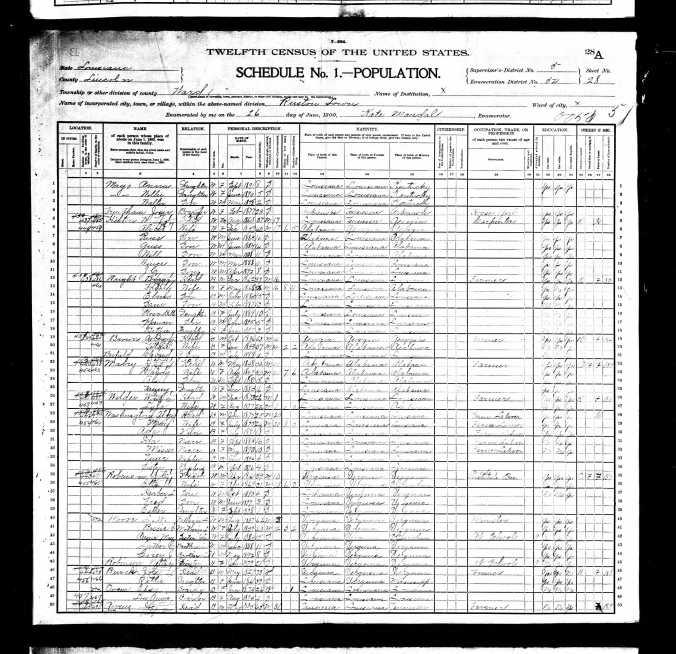 1900UnitedStatesFederalCensus_FE Mayo Page 2