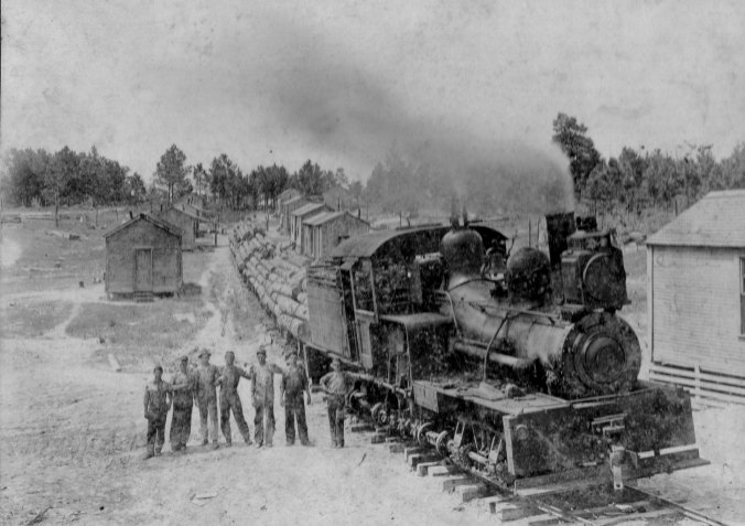 logging-train